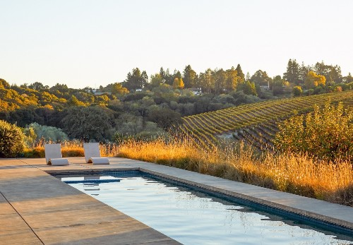 The Winemaker's Life: A Garden Idyll in Northern California