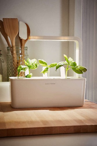 Click and Grow: A Miniature Herb Garden for a Kitchen Countertop