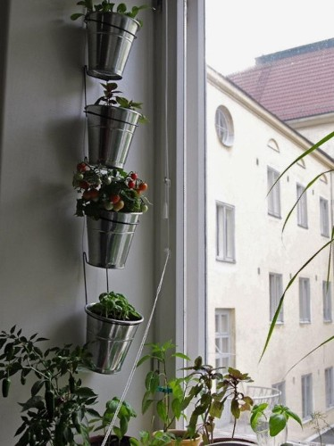 The Urban Garden: Low-Cost Solutions from Ikea