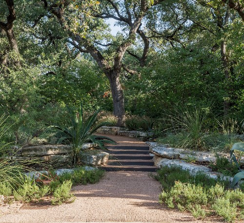 Hardscaping 101: Rain Gardens