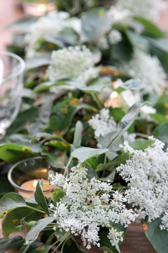 DIY: Foraging for a Midsummer Botanical Tabletop
