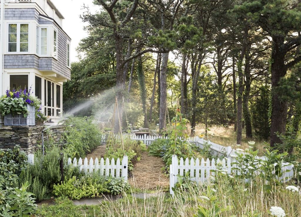 Your First Garden: The Right Watering Method for Your Garden - Gardenista