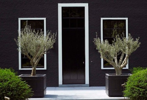 Curb Appeal: A Perfect Paint Palette for a Dark Facade