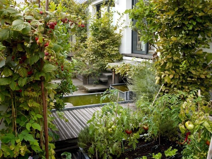 Secret Paris: A Tiny Roof Garden with an Eiffel Tower View - Gardenista