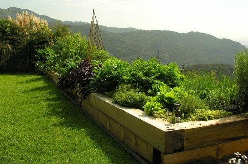 Ask the Expert: How to Create a Beautiful Edible Garden