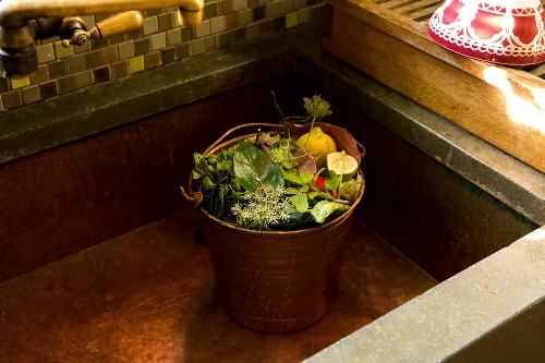 Your First Garden: The Surprising (And Best) Reason to Start Composting