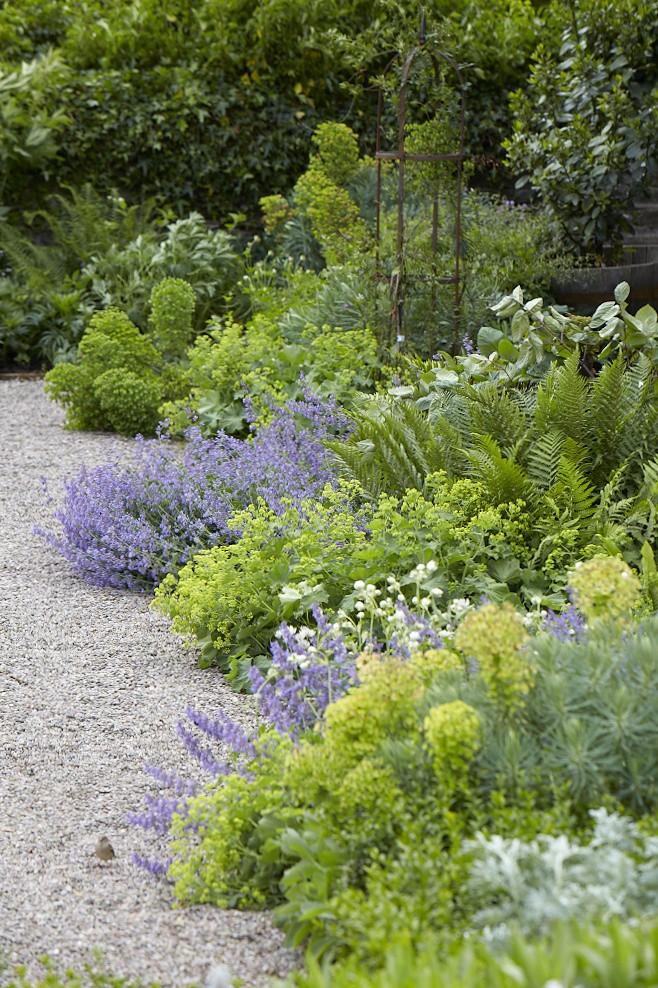8 Favorites: The Best Chartreuse Plants to Brighten a Garden - Gardenista