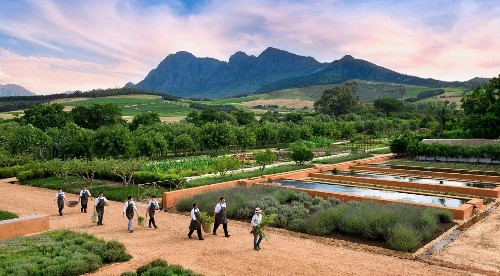 10 Ideas to Steal from Chefs' Gardens Around the World - Gardenista