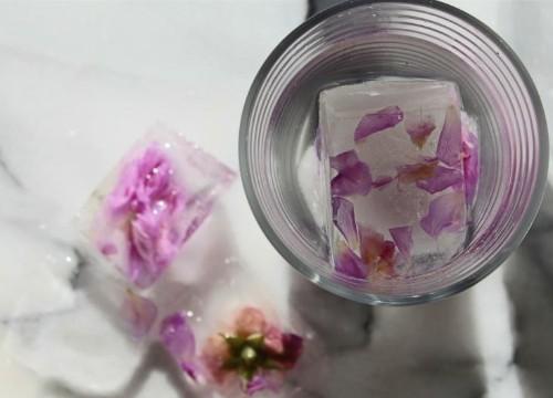 DIY: Rose Petal Ice Cubes