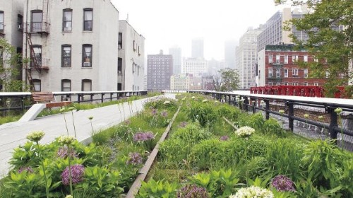 10 Garden Ideas to Steal from the High Line in New York City - Gardenista
