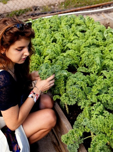 Moveable Feast: A Pop-Up Farm in Brooklyn