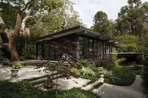 Landscape Architect Visit: A Majestic Sycamore in a Santa Monica Garden - Gardenista