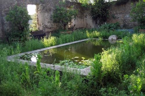 Paradise Found: Designer Dan Pearson's Modern Garden for a Medieval Castle