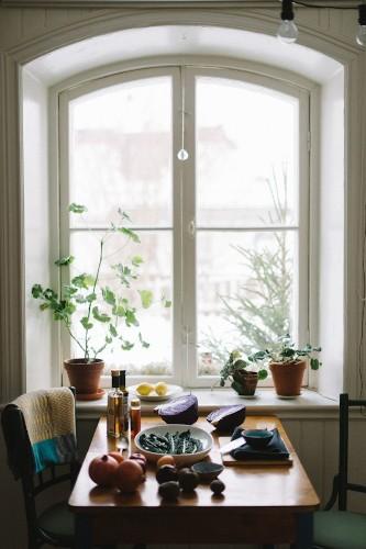 Gardening 101: Pelargonium