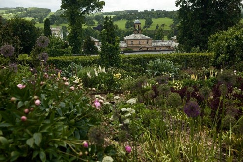 Flowers For The House: The Cutting Garden at Chatsworth