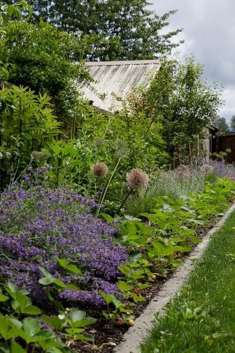 Best Edible Garden Winner: Britton Shepard