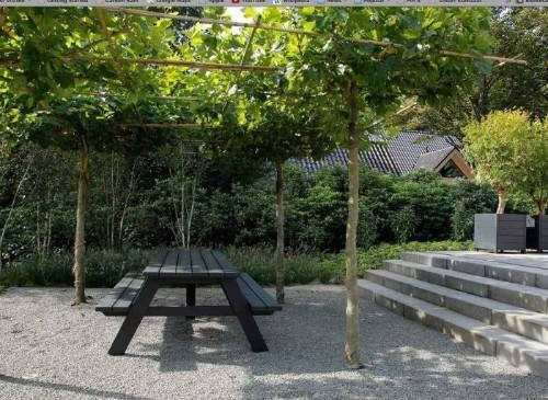 A Classical Approach to a Mod Minimalist Dutch Garden