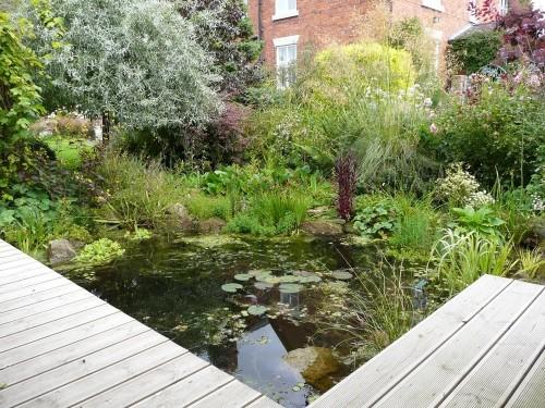 Best UK Amateur Garden: An Artist's Country Garden by Bev Horsley