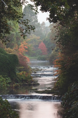 Required Reading: The Irish Garden