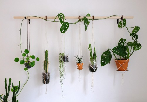 Maria Bergström's DIY Plant Wall Made from a Broomstick