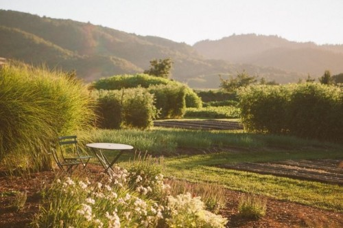 Garden Visit: The French Laundry in California's Napa Valley