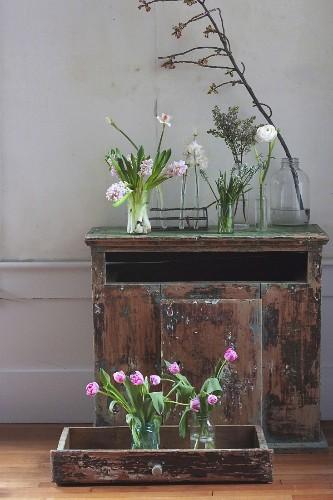 Test Drive: Which Cut Flowers Last Longest?