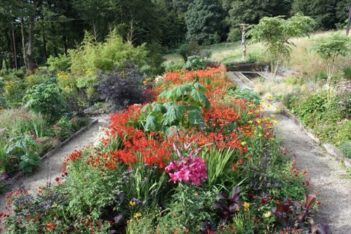 Garden Visit: At Home with June Blake in Ireland's County Wicklow