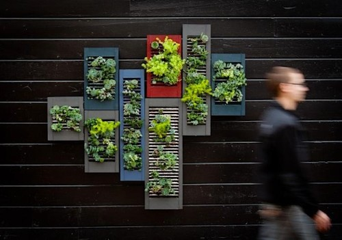 Vertical Gardens Made With—