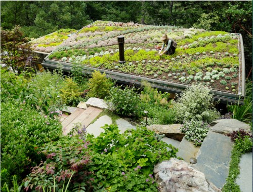 Hardscaping 101: Green Roofs