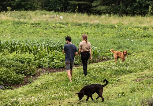 13 Ideas to Steal from Maine's Young DIY Farmers