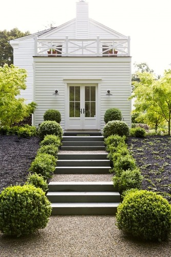 Gardenista Roundup: For Love of Boxwood