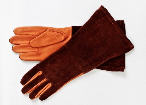 Leather Garden Gloves That Will Change Your Life