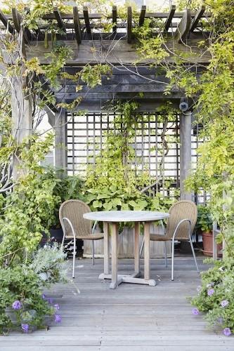 Garden Visit: At Home with Designer Julie Weiss in Manhattan