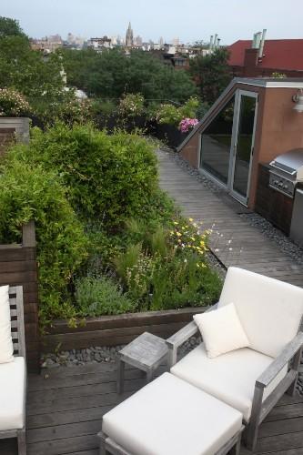 Garden Designer Visit: A Rooftop Meadow, Brooklyn Edition