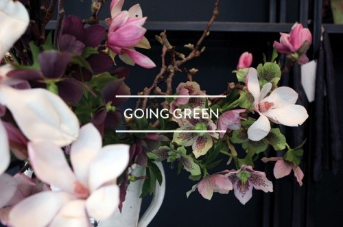 Table of Contents: Going Green