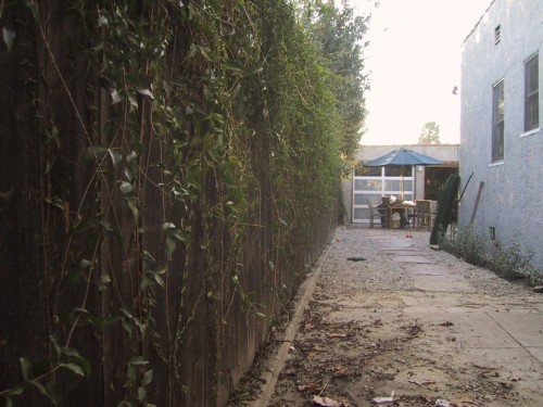 Best Urban Garden Winner: Alexandra Tasker Marx Landscape Architect