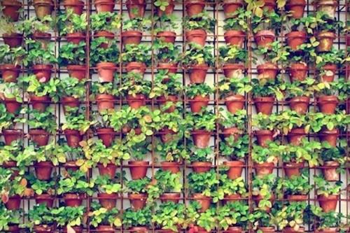 Joost Bakker's Vertical Gardens