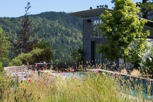 Poppies in Paradise: A Garden Visit in Healdsburg, California