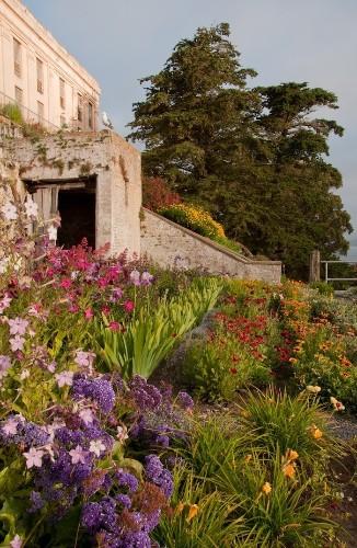 Escape to Alcatraz: Go Directly to Jail to Tour the Gardens