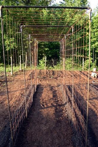 Vegetable Garden Design: DIY Bean Trellis