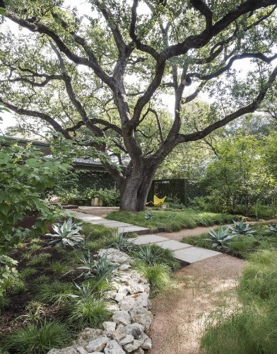 11 Ideas to Steal from Drought-Tolerant Gardens