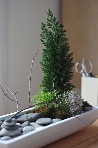 DIY: A Desktop Zen Garden