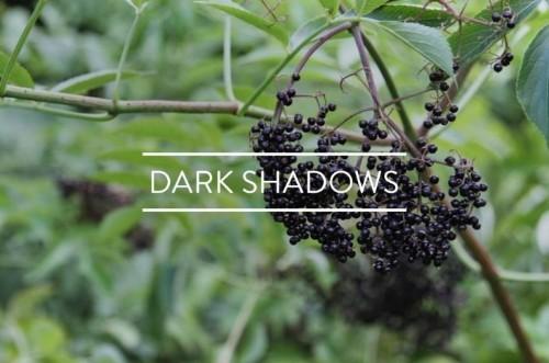 Table of Contents: Dark Shadows