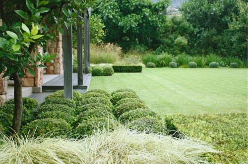 Garden Designer Visit: A Study in Green by Franchesca Watson