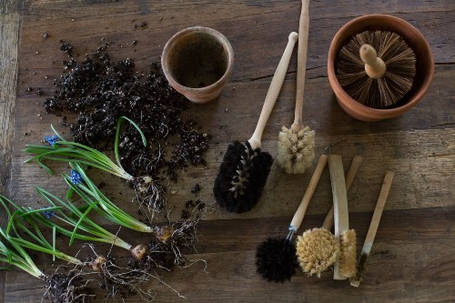 April To-Do: Rehab Time for Garden Pots