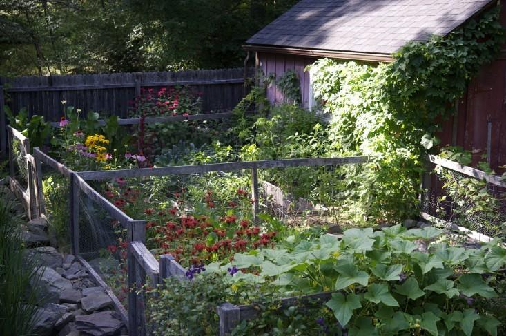 Garden Visit: A Cook's Garden in Upstate New York - Gardenista