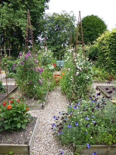 Behind the Hedges: Catherine Horwood's Hidden Kitchen Garden