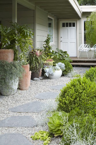 Landscaping & Gardening - cover