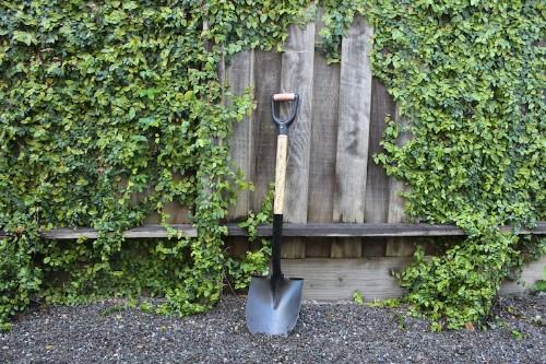 Your First Garden: 5 Rookie Mistakes to Avoid This Spring - Gardenista