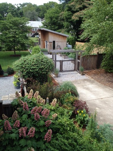 Best Garden Shed or Outbuilding Winner: Maggie Anthony Design